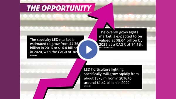 The_Opportunity-thumbnail-web